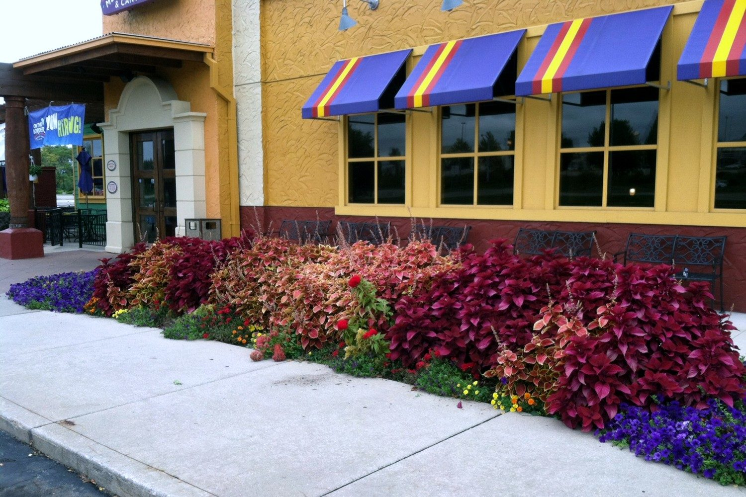 Commercial Landscape Companies West Michigan