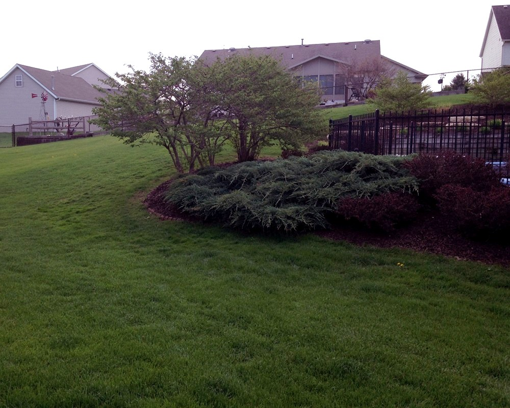 Spring and Fall Yard and Landscaping Clean Up in Grand Rapids MI - ProMow Landscape